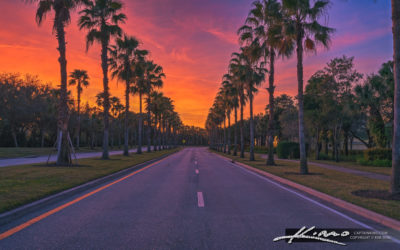 Gardens Parkway Sunset at Palm Beach Gardens Florida