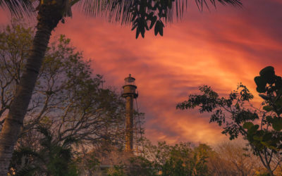 Sanibel Lighthouse at Lighthouse Beach Park Florida Coconut Tree
