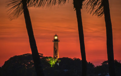 Jupiter Inlet Lighthouse Sunset Coconut Tree