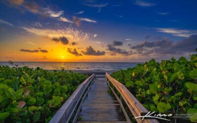 Palm Beach Shores Beach Entrance Singer Island Florida