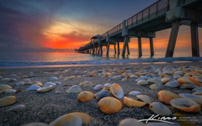 Juno Beach Pier Sunrise Sea Shells July 21 2021