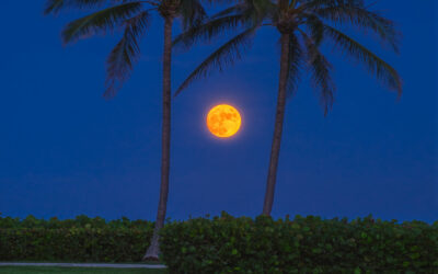 Ocean Cay Park Juno Beach Florida Moon Rise August 21 2021