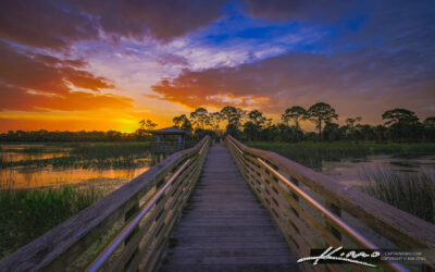Winding Waters Natural Area West Palm Beach Florida Sunset at Boardwalk